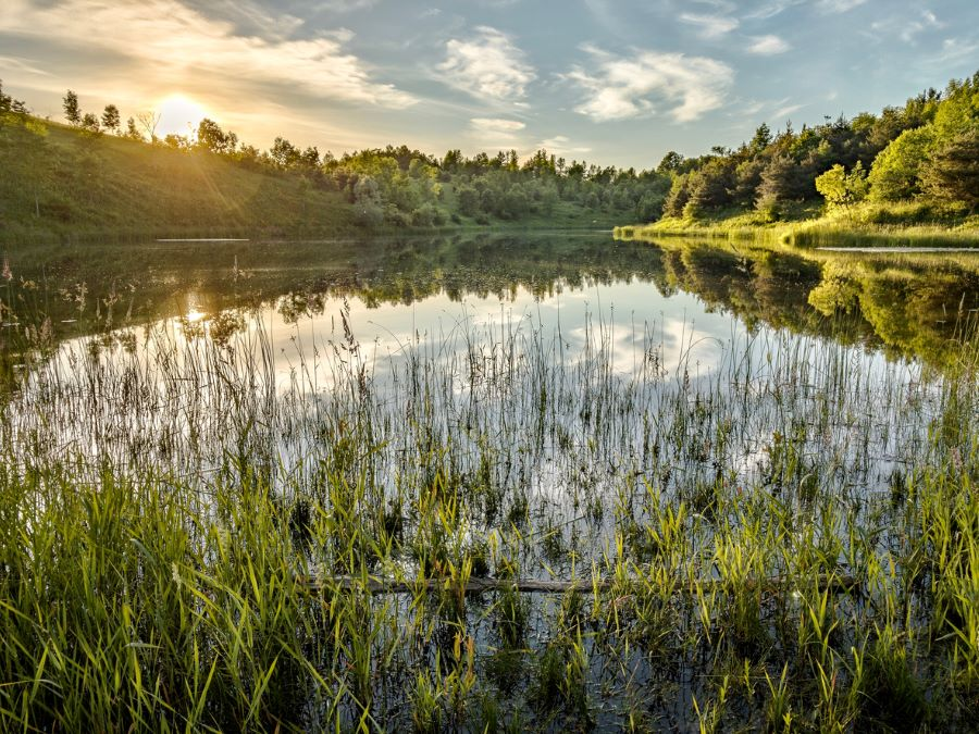 Here's Why You'll Love Living in Caledon